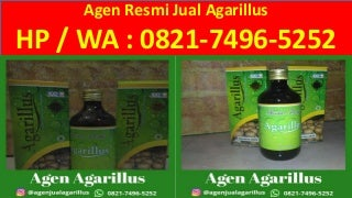 Cara Menjadi Agen Agarillus di Banjarmasin, 0821.7496.5252(Tsel)