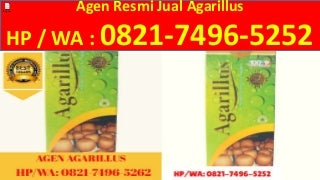 Cara Menjadi Agen Agarillus di Sukabumi, 0821.7496.5252(Tsel)