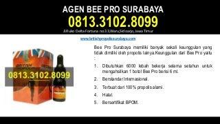 Agen bee pro surabaya - 0813.3102.8099