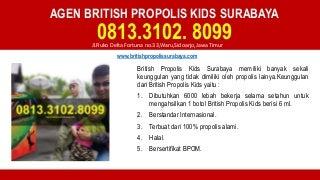 Agen british propolis kids surabaya - 0813.3102.8099