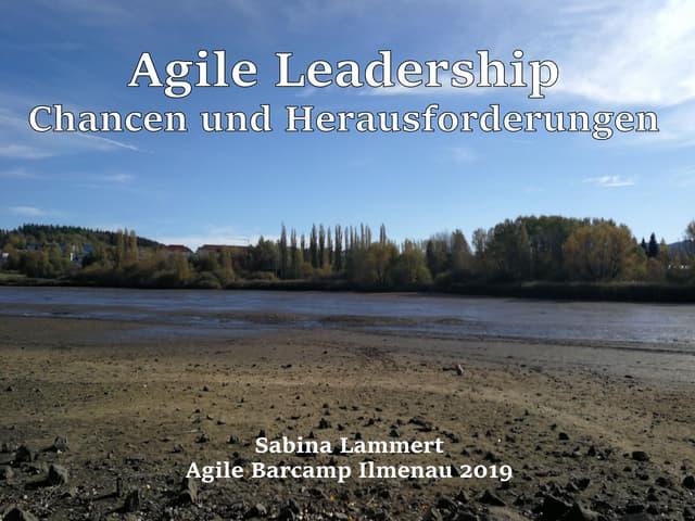 Agile Leadership - Chancen und Herausforderungen