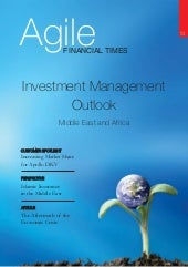 Agile Financial Times May09 Edition