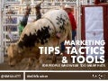 Marketing Tips, Tactics, & Tools for People Who Wear too Many Hats