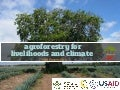 Agroforestry for Livelihoods and Climate