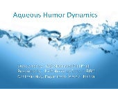 Aqueous humor dynamics