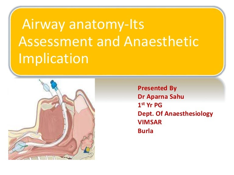 Airway anatomy its assessment and anaesthetic implication