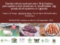 Taenia solium cysticercosis: Risk factors, perceptions and practices in smallholder pig production systems in Uganda