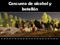 Alcohol y botellón