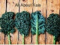 All about kale