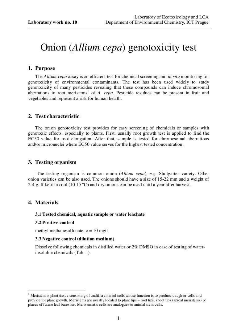 Allium Cepa Genotoxicity Test