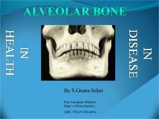Alveolar bone in health and disease