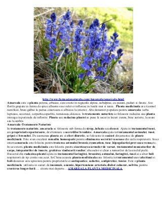 Amareala planta medicinala