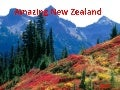 Amazing New Zealand (Cmp)