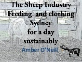 The Sheep Industry Feeding and clothing Sydney for a day sustainably