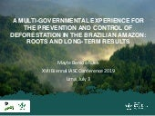 A multi-governmental experience for the prevention and control of deforestation in the Brazilian Amazon: Roots and long-term results