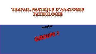 Rue De La Rencontre Annonces De Rencontre Escort Annemasse Femme Fontaine