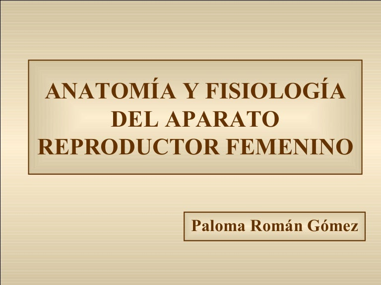 aparato reproductor masculino libros pdf