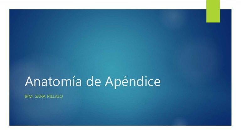 Anatomía de apéndice