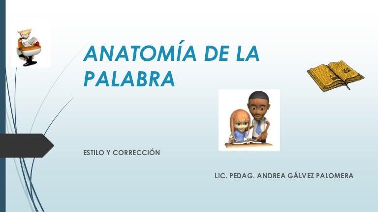 Vistoso Otra Palabra Para La Anatomía Modelo - Anatomía de Las ...