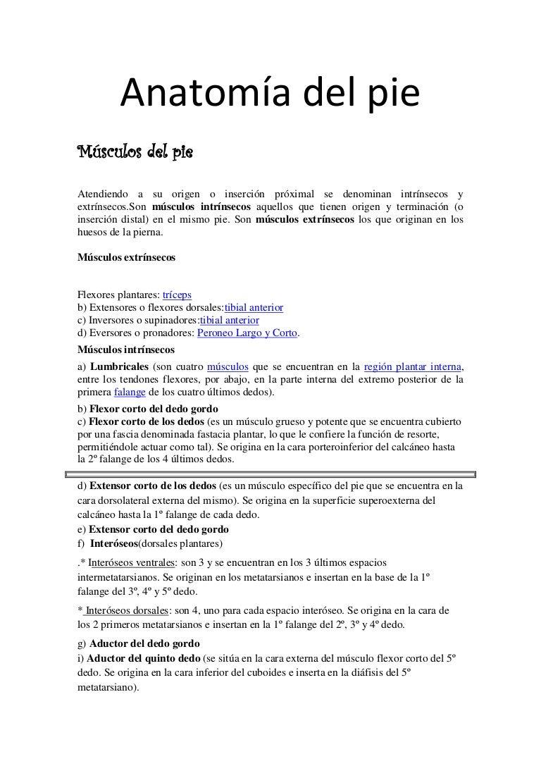anatomadelpie-161221084730-thumbnail-4.jpg?cb=1482310058