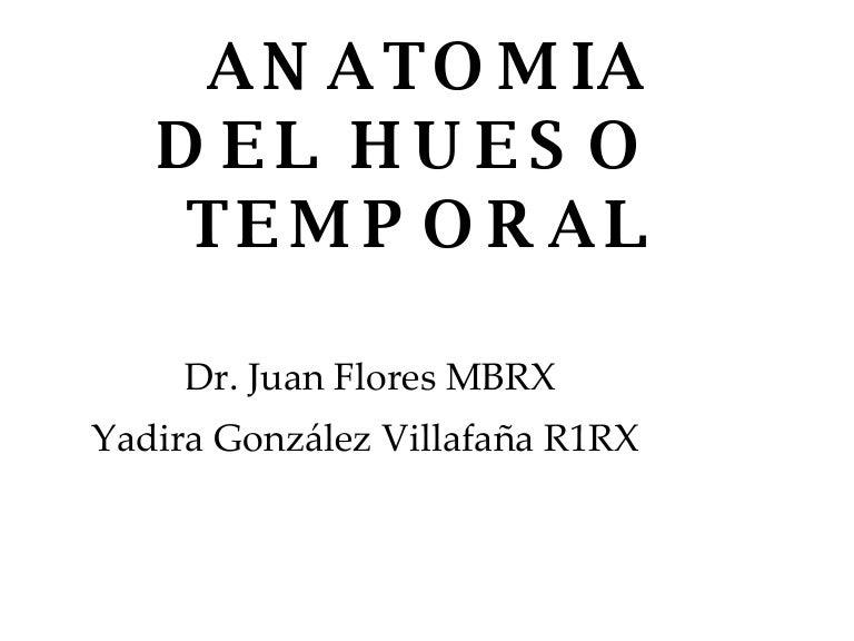 Anatomia Del Hueso Temporal