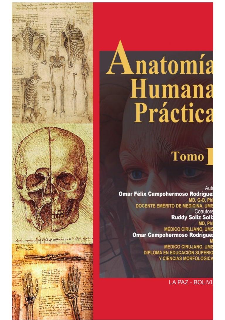 Anatomia tomo uno