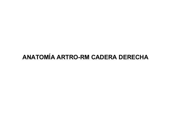 Anatomia artrorm cadera