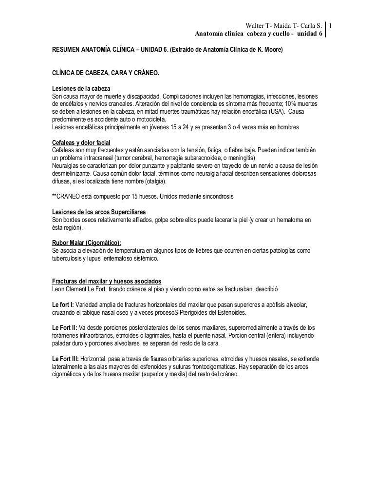Moderno Arco Compuesto Anatomía Molde - Imágenes de Anatomía Humana ...