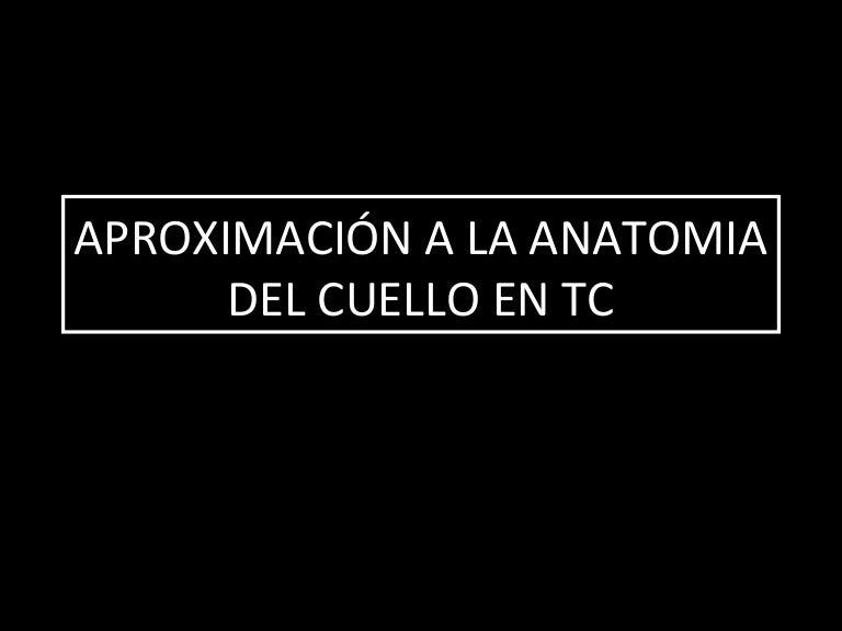 ANATOMIA DEL CUELLO EN TC