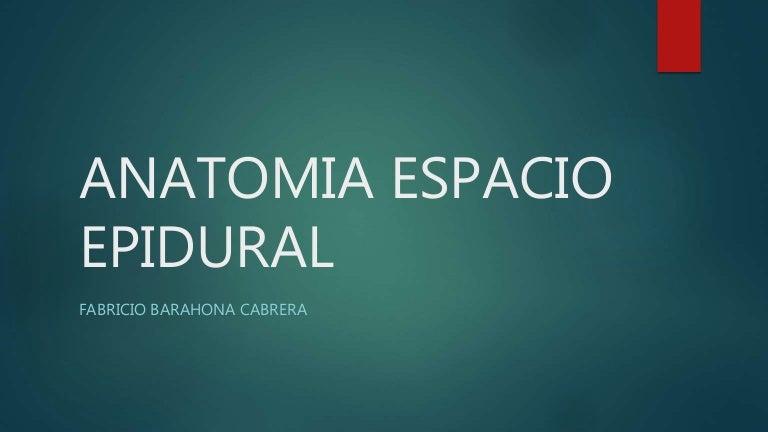 Anatomia espacio epidural