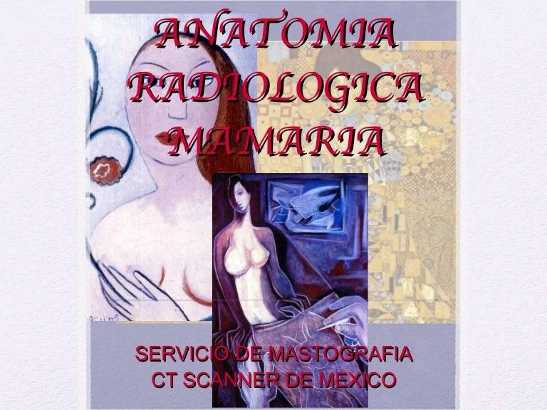 Anatomia mamaria ct