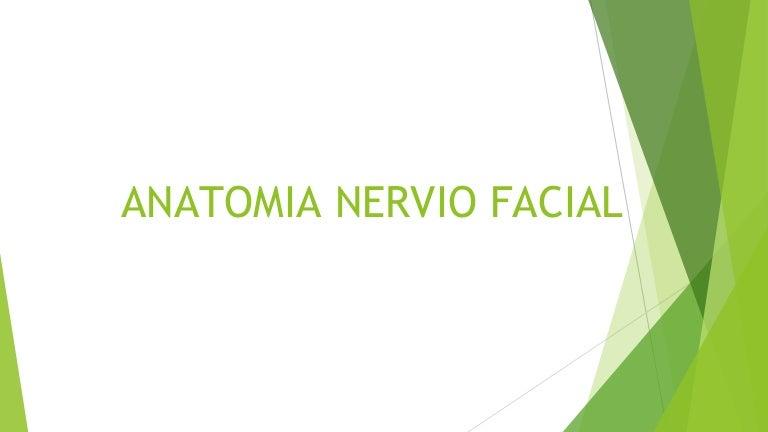 pruebas de ramas del nervio facial para la diabetes