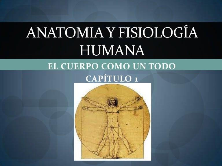 Anatomia y fisiología humana cap 1