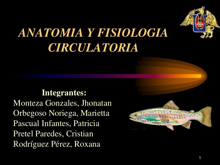 Anatomia y fisiologia circulatoria en peces