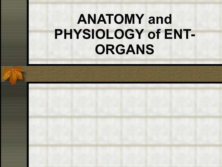 anatomy-110223050305-phpapp01-thumbnail-4.jpg?cb=1298437811
