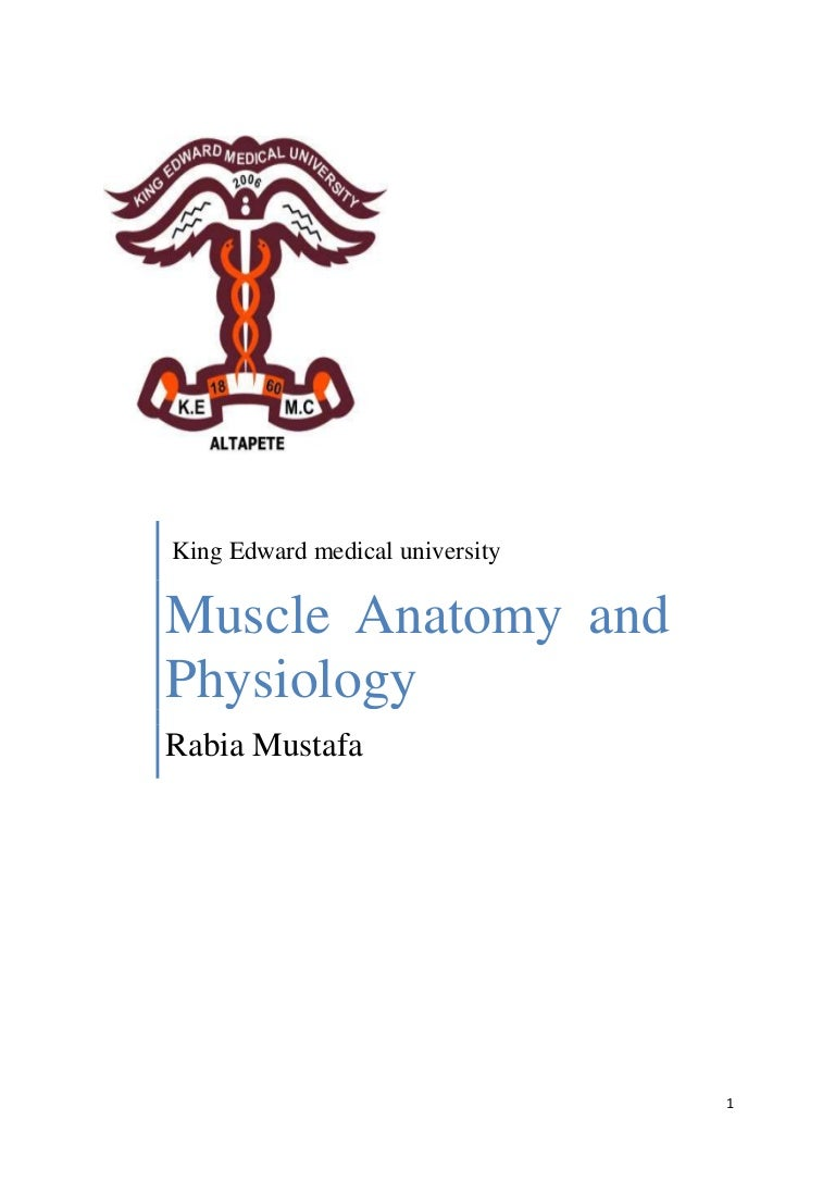Anatomy and physiology of muscle