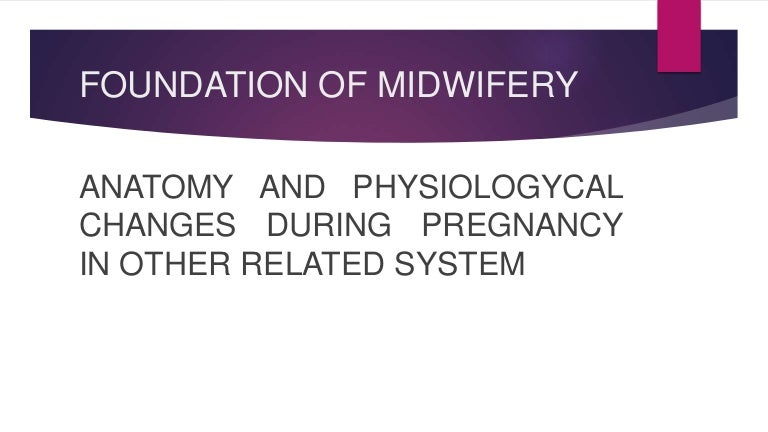 Anatomy And Physiological Changes In Pregnancy