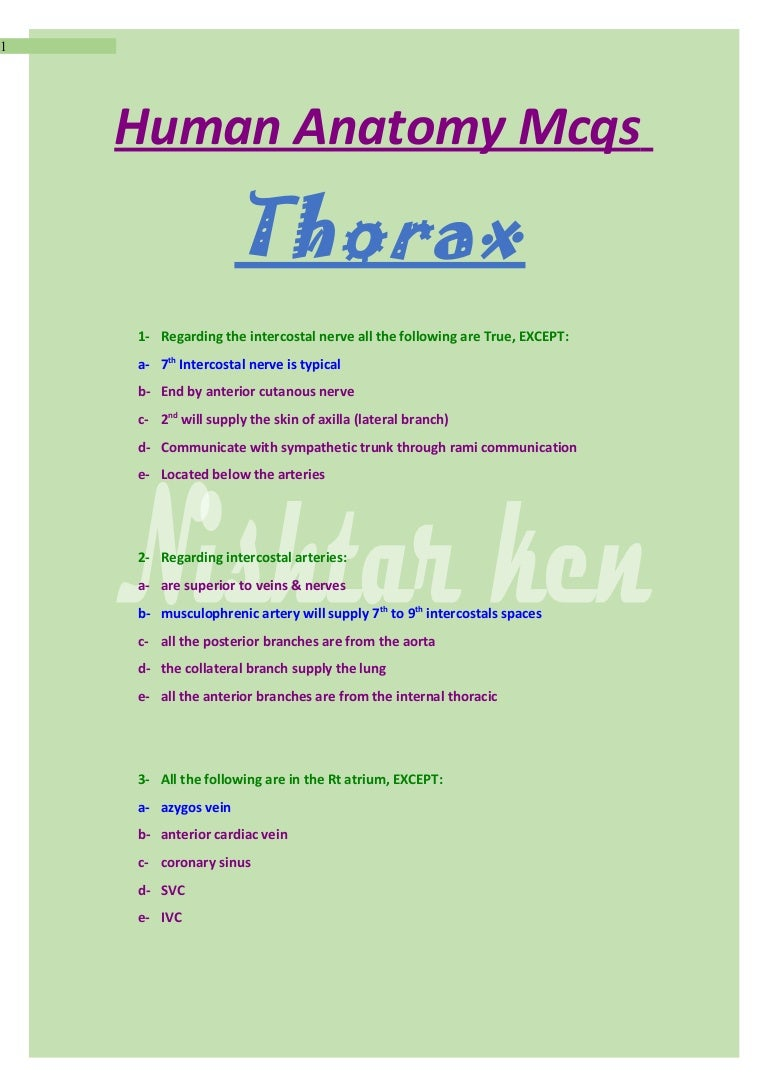 Anatomy mcqs thorax