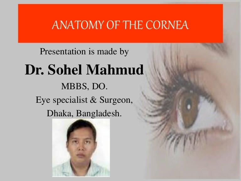 Anatomy of cornea of dr. sohel mahmud
