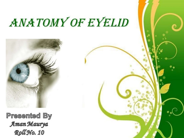 Anatomy of eyelid