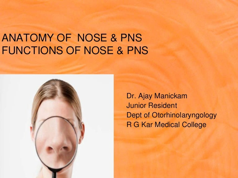 Anatomy Of Lateral Wall Of Nose Amp Pns Ajay M