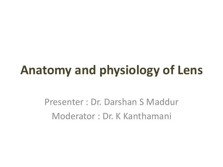 Anatomy Of Lens