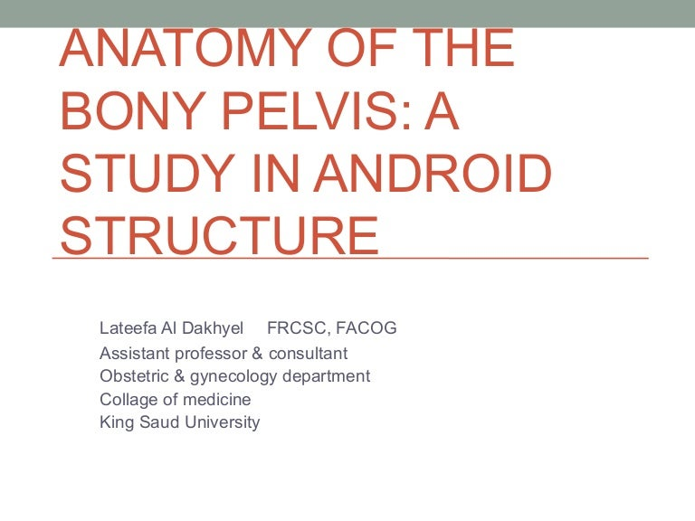 Anatomy Of The Bony Pelvis A Study In Android Structure