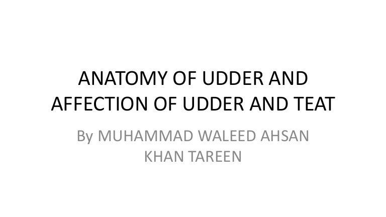 Anatomy & Affection of Udder & Teat
