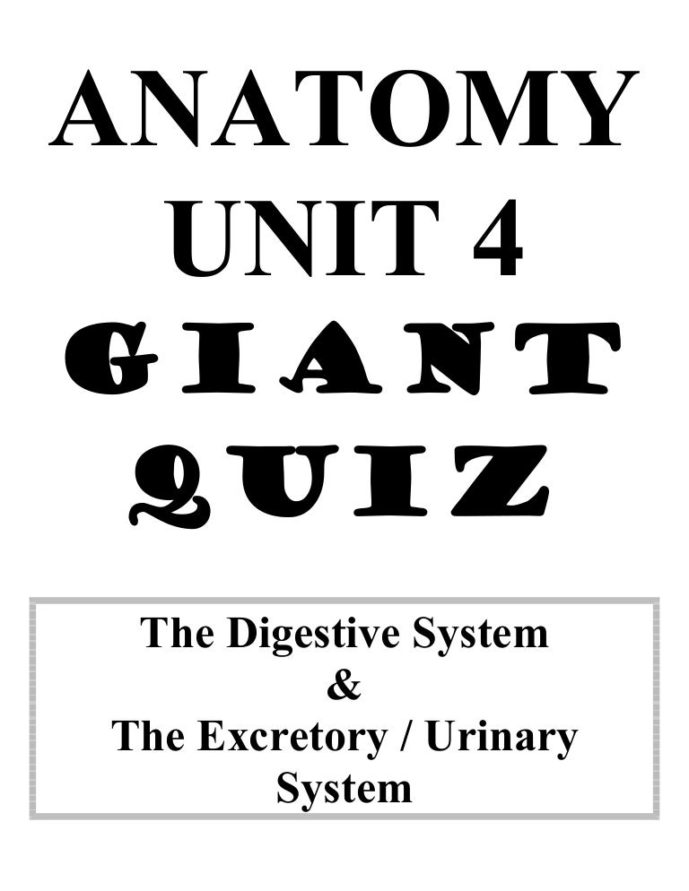 Anatomy unit 4 digestive and excretory systems big quiz review questi…