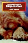 Animais de estimação   princípios básicos para a criação de cães