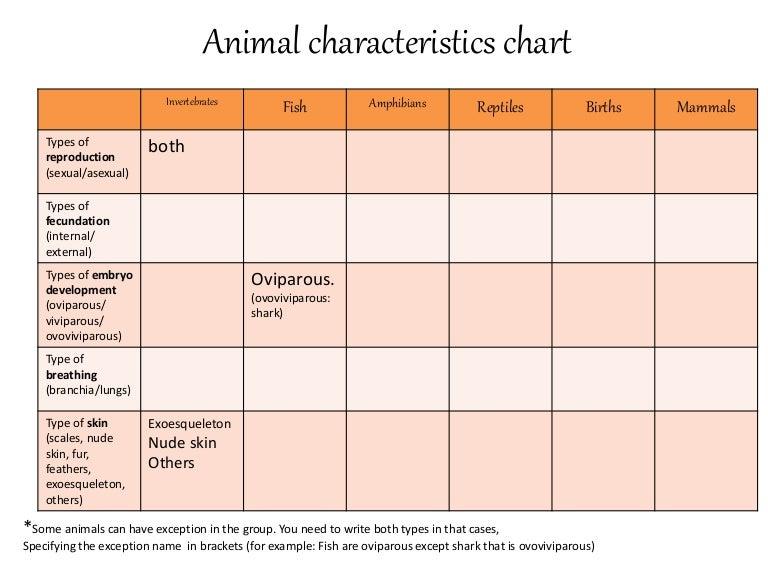 Animal Characteristics Chart