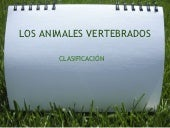 Animales vetebrados