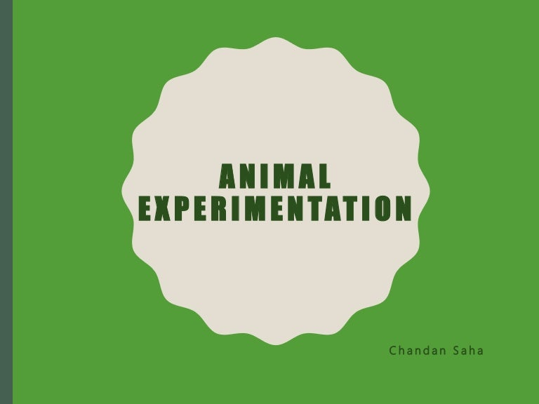 procon org animal testing