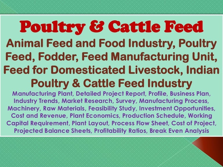 fish feed production business plan